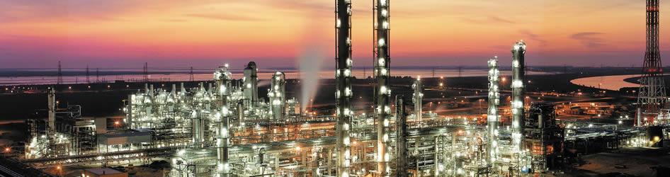 Verdis Small Petrochemical Unit